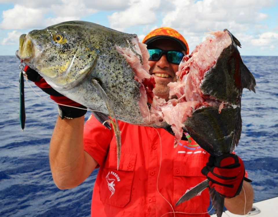 bluefin trevally cut - Rod Fishing Club - Rodrigues Island - Mauritius - Indian Ocean