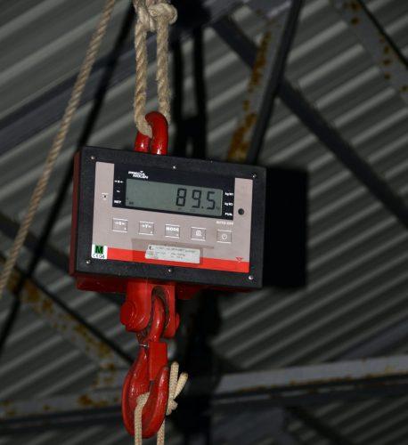 IGFA Potentiel Record du monde smallfry 89.5kg thon dents de chien - www.rodfishingclub.com -Rodrigues - Maurice - Océan Indien