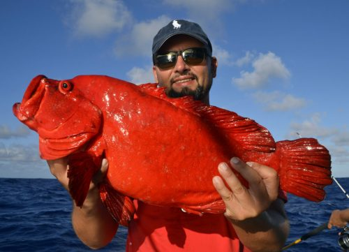 Mama rouge en pêche a l'appât - www.rodfishingclub.com - Rodrigues - Maurice - Océan Indien