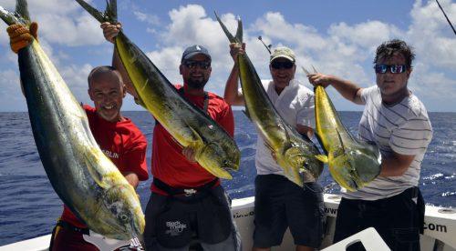 Quadruplé de dorades en pêche a la traîne - www.rodfishingclub.com - Rodrigues - Maurice - Océan Indien