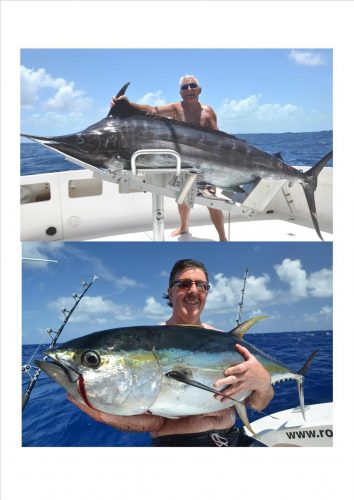 Marlin et thon jaune - Rod Fishing Club - Ile Rodrigues - Maurice - Océan Indien