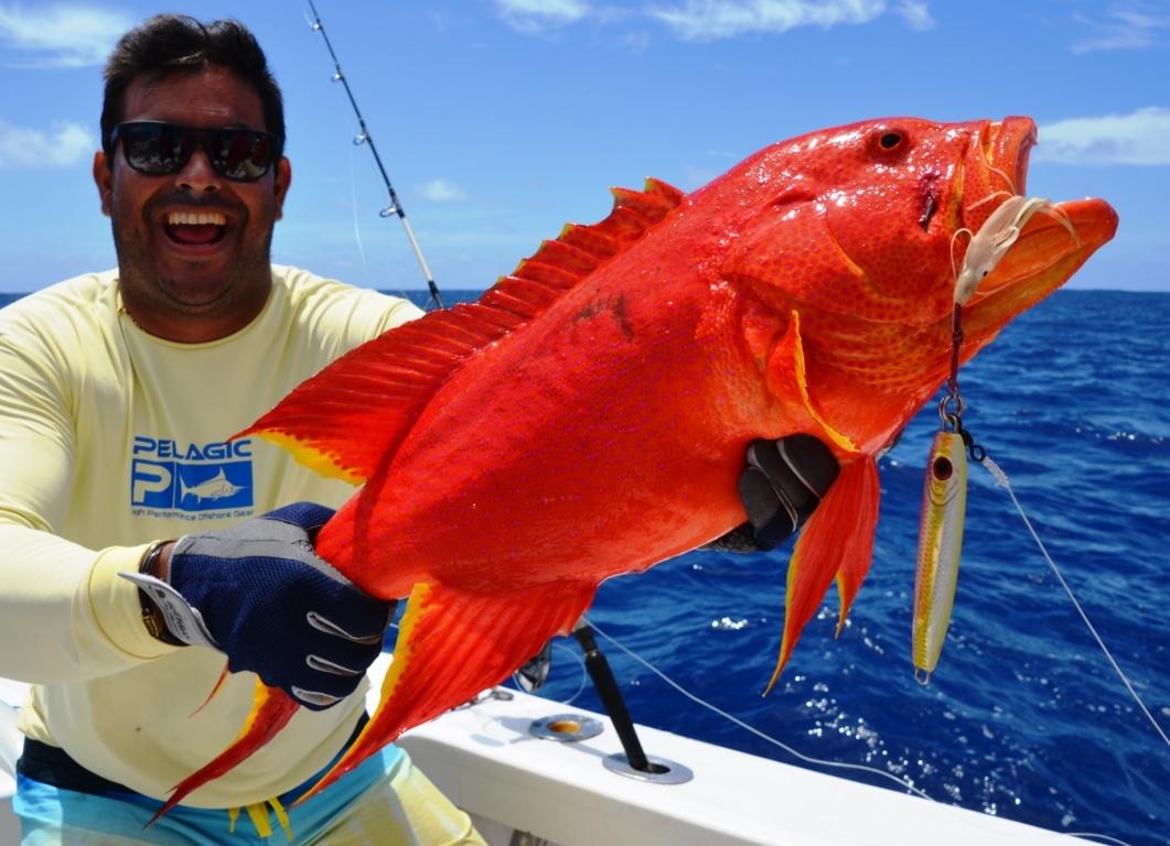 Moontail sea bass or Variola luti fishing technique - Rod Fishing Club - Rodrigues Island - Mauritius - Indian Ocean