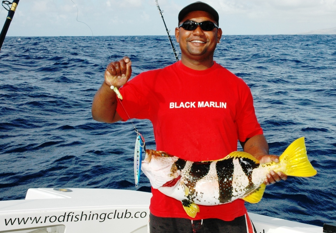 Saddle grouper or Plectopromus laevis fishing technique - Rod Fishing Club - Rodrigues Island - Mauritius - Indian Ocean