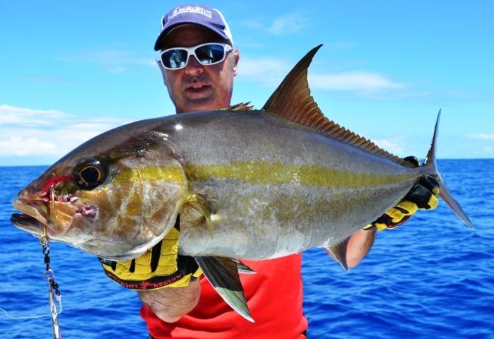 Seriola on jigging - Rod Fishing Club - Rodrigues Island - Mauritius - Indian Ocean