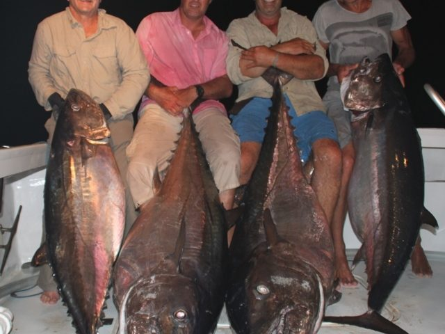 belle brochette de doggies entre 69 et 100.240kg - Rod Fishing Club - Ile Rodrigues - Maurice - Océan Indien