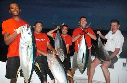 belle brochette de thons jaunes de + 40kg - Rod Fishing Club - Ile Rodrigues - Maurice - Océan Indien