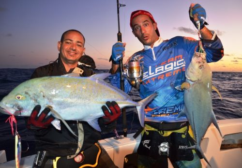 belle diversité en jigging - Rod Fishing Club - Ile Rodrigues - Maurice - Océan Indien