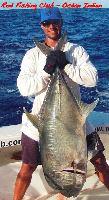 carangue ignobilis - Rod Fishing Club - Ile Rodrigues - Maurice - Océan Indien