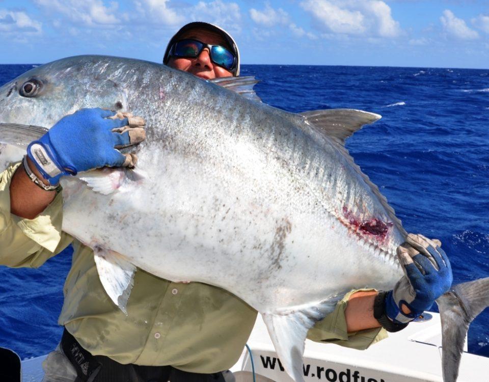 carangue ignobilis de 40kg relâché par Marc - Rod Fishing Club - Ile Rodrigues - Maurice - Océan Indien