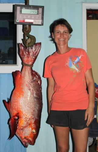 carpe rouge nouveau record - Rod Fishing Club - Ile Rodrigues - Maurice - Océan Indien