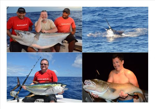 doggy, thon jaune, marlin et poisson poulet - Rod Fishing Club - Ile Rodrigues - Maurice - Océan Indien