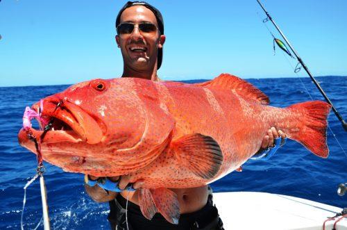 mérou babone prise au jig - Rod Fishing Club - Ile Rodrigues - Maurice - Océan Indien
