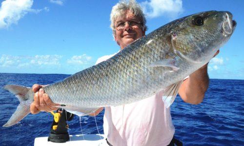 poisson poulet par Maurice- Rod Fishing Club - Ile Rodrigues - Maurice - Océan Indien