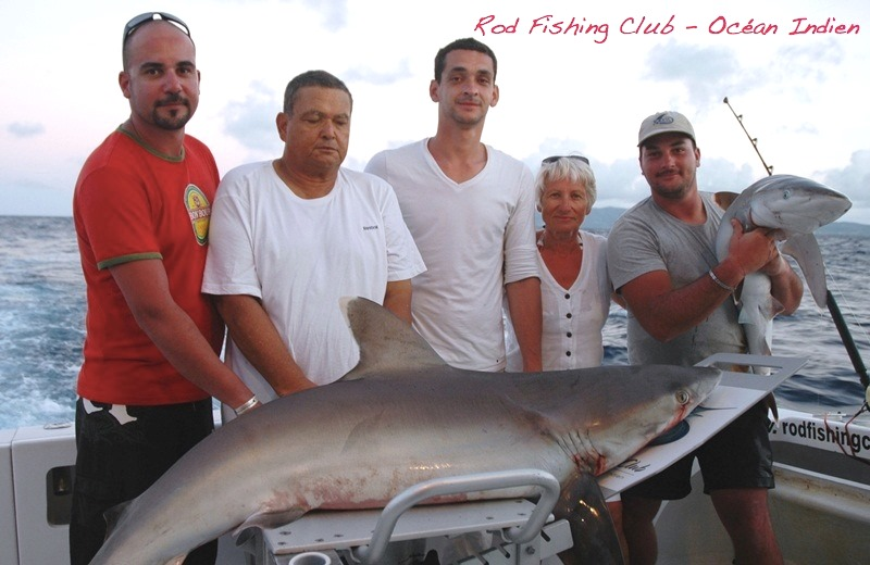 requin - Rod Fishing Club - Ile Rodrigues - Maurice - Océan Indien