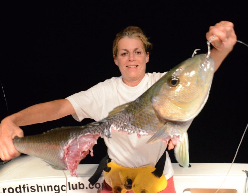 restes d'un poisson poulet - Rod Fishing Club - Ile Rodrigues - Maurice - Océan Indien