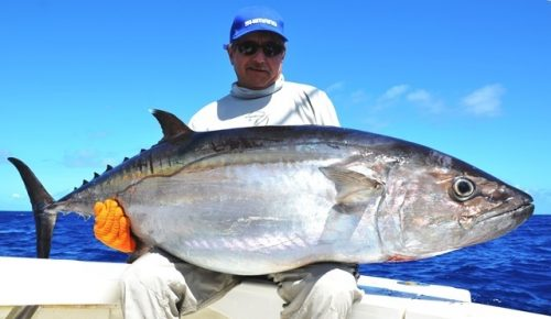 thon dents de chien de 49kg - Rod Fishing Club - Ile Rodrigues - Maurice - Océan Indien