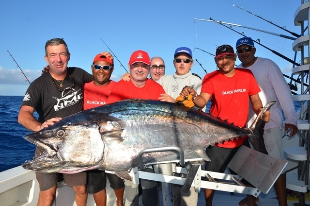 thon dents de chien de 97kg - Rod Fishing Club - Ile Rodrigues - Maurice - Océan Indien