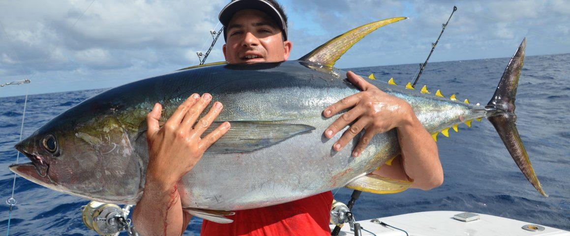 thon jaune de 40kg - Rod Fishing Club - Ile Rodrigues - Maurice - Océan Indien