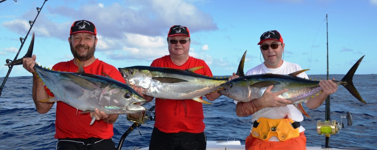 thons jaunes - Rod Fishing Club - Ile Rodrigues - Maurice - Océan Indien
