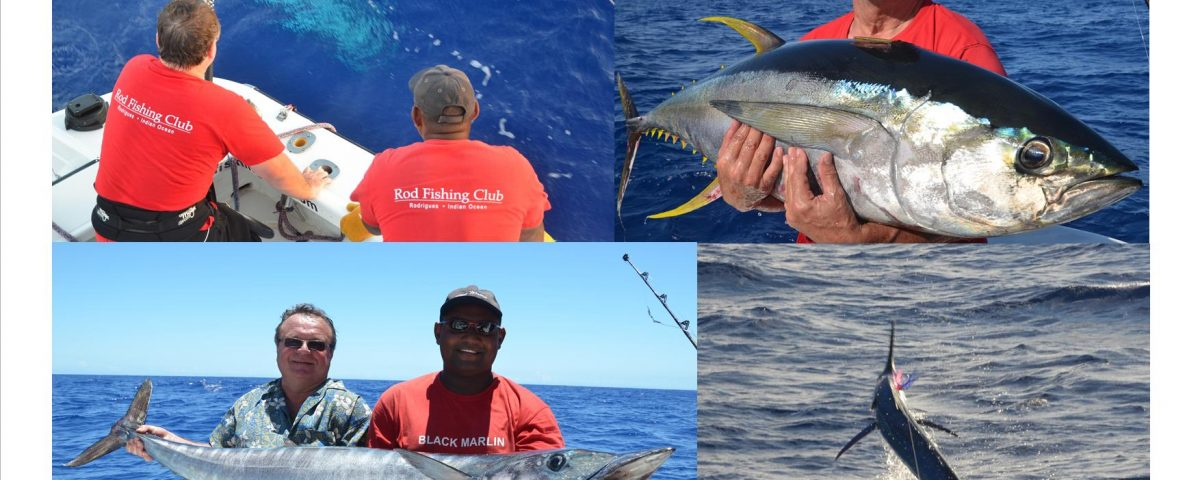 wahoo, thon jaune et marlin - Rod Fishing Club - Ile Rodrigues - Maurice - Océan Indien