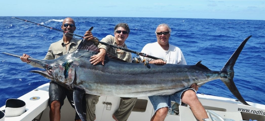 130kg black marlin on Heavy spinning by Claudius - Rod Fishing Club - Rodrigues Island - Mauritius - Indian Ocean