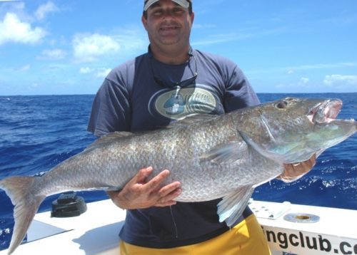 18kg jobfish on bottomfishing - Rod Fishing Club - Rodrigues Island - Mauritius - Indian Ocean