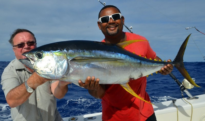 26kg yellowfin tuna on trolling - Rod Fishing Club - Rodrigues Island - Mauritius - Indian Ocean