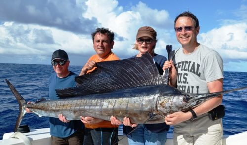 40kg sailfish on trolling - Rod Fishing Club - Rodrigues Island - Mauritius - Indian Ocean