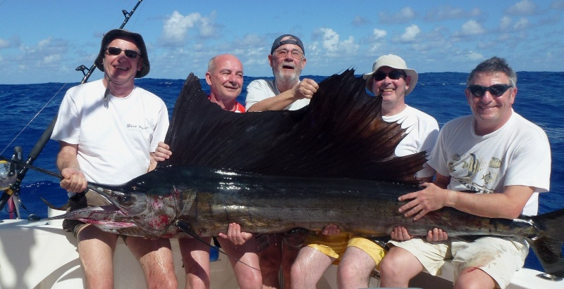 45kg sailfish on trolling - Rod Fishing Club - Rodrigues Island - Mauritius - Indian Ocean