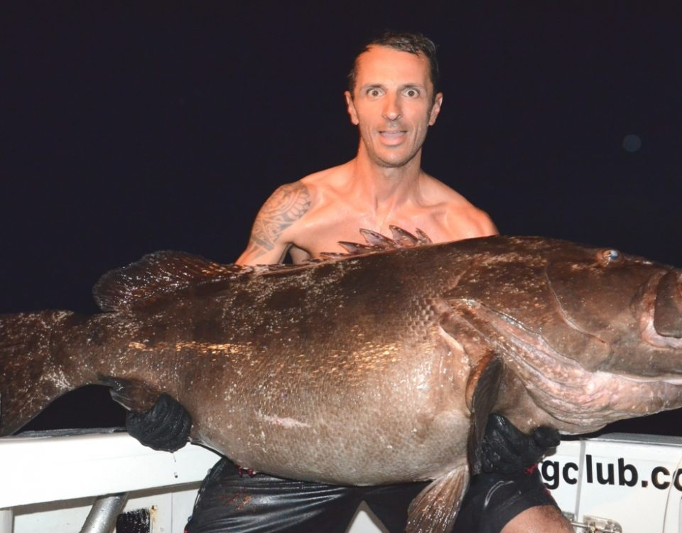 50kg Dusky grouper on livebaiting for Jean Guy - Rod Fishing Club - Rodrigues Island - Mauritius - Indian Ocean