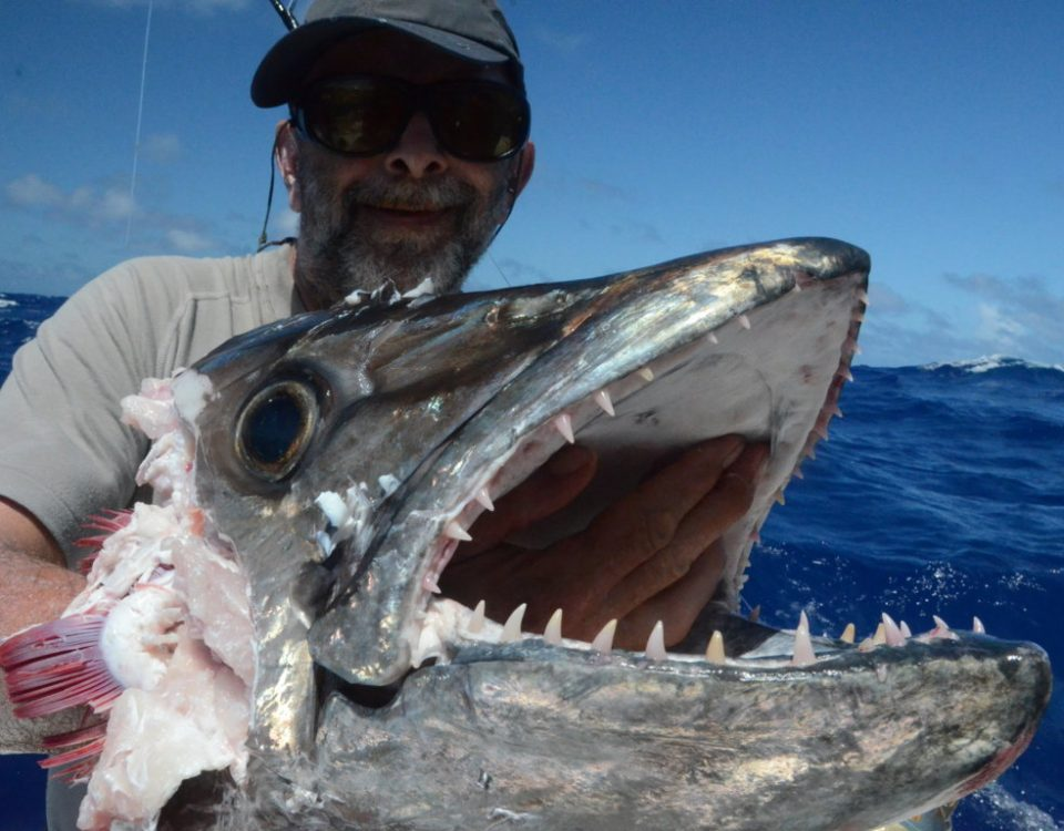 50kg head of doggy eaten by sharks for Pascal - Rod Fishing Club - Rodrigues Island - Mauritius - Indian Ocean