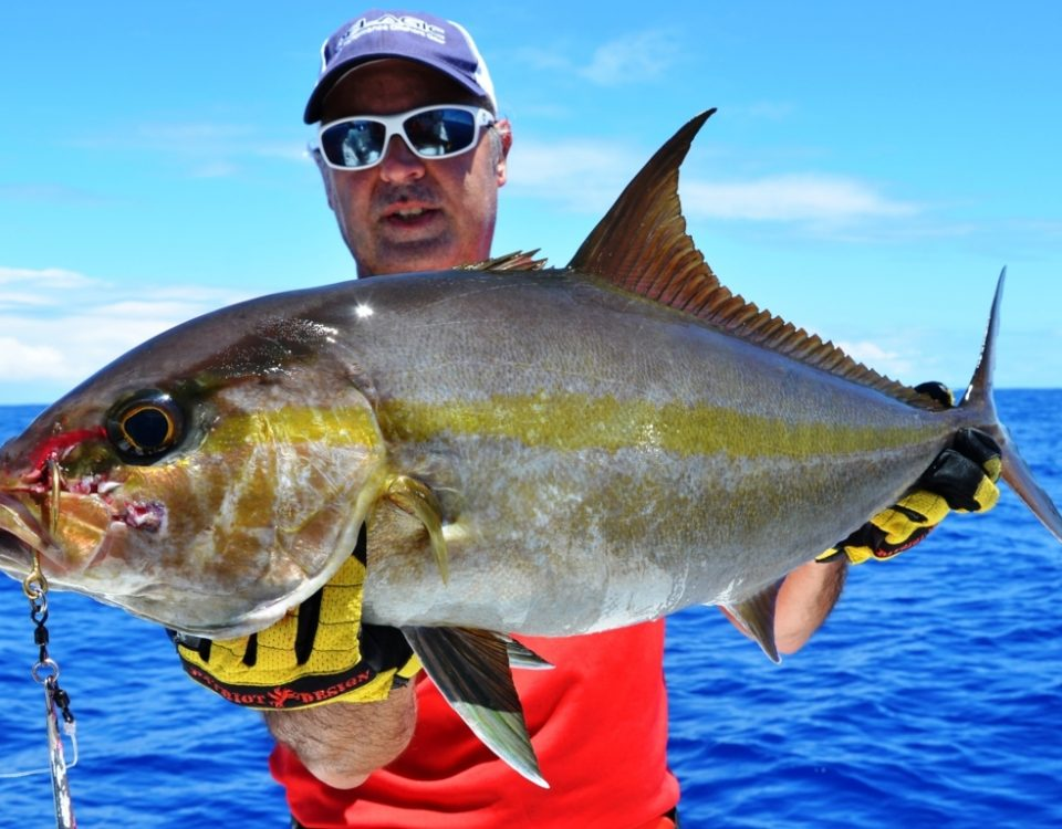Amberjack or Seriola dumerili - Rod Fishing Club - Rodrigues Island - Mauritius - Indian Ocean