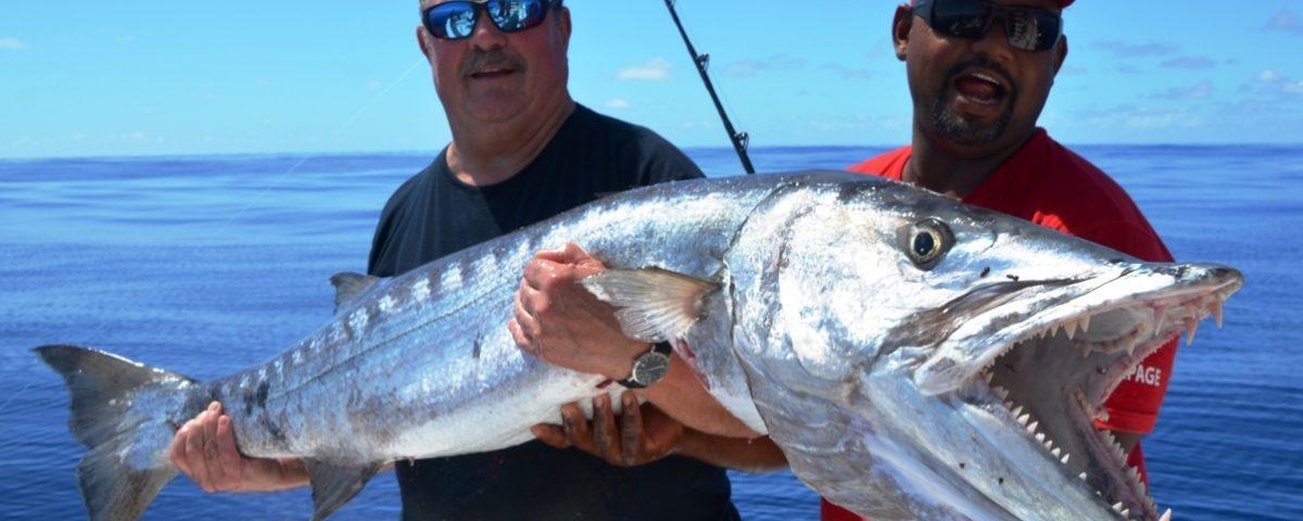 Barracuda or Sphyraena barracuda - Rod Fishing Club - Rodrigues Island - Mauritius - Indian Ocean