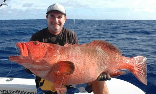 Big red coral trout - Rod Fishing Club - Rodrigues Island - Mauritius - Indian Ocean