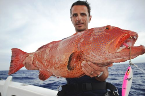 Big red coral trout on jigging - Rod Fishing Club - Rodrigues Island - Mauritius - Indian Ocean