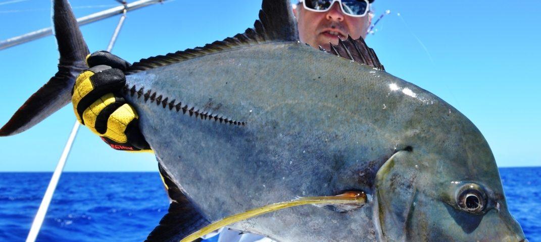 Black jack or caranx lugubris - Rod Fishing Club - Rodrigues Island - Mauritius - Indian Ocean