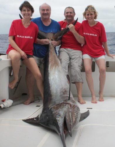 Black marlin caught on trolling - Rod Fishing Club - Rodrigues Island - Mauritius - Indian Ocean