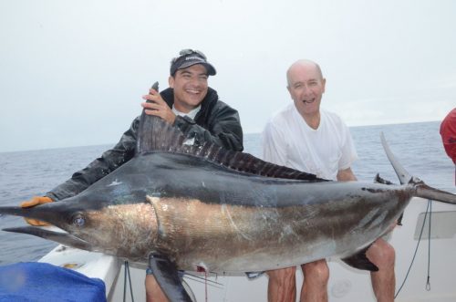 Black marlin on trolling - Rod Fishing Club - Rodrigues Island - Mauritius - Indian Ocean