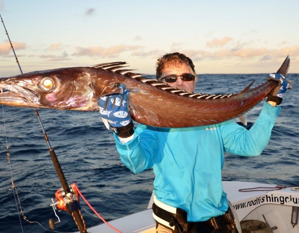 Black snoek or Thyrsitoides marleyi - Rod Fishing Club - Rodrigues Island - Mauritius - Indian Ocean