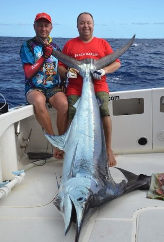 Blue marlin on trolling - Rod Fishing Club - Rodrigues Island - Mauritius - Indian Ocean