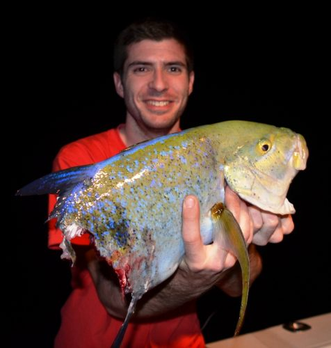Bluefin Trevally after shark for Kevin - Rod Fishing Club - Rodrigues Island - Mauritius - Indian Ocean