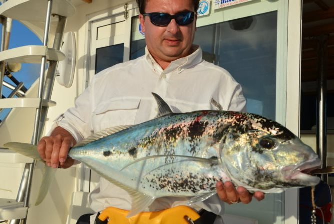Carangoides fulvoguttatus- Rod Fishing Club - Rodrigues Island - Mauritius - Indian Ocean