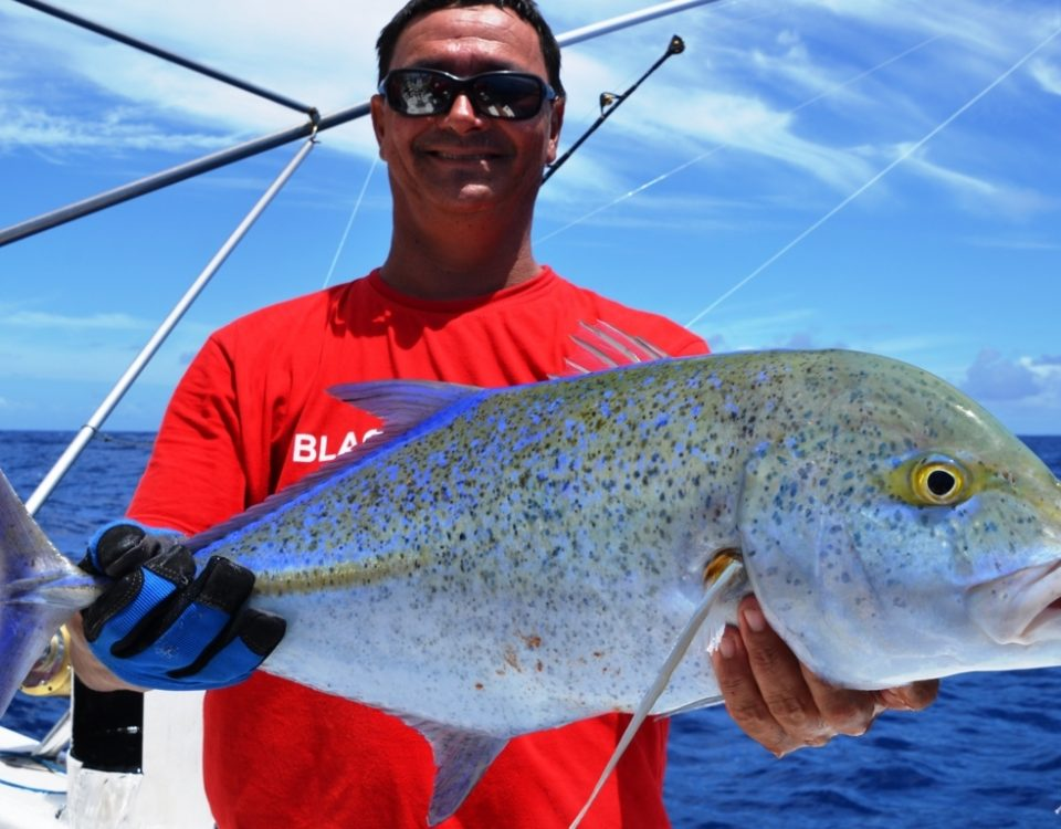 Carangue bleue ou Caranx melampygus - Rod Fishing Club - Ile Rodrigues - Maurice - Océan Indien