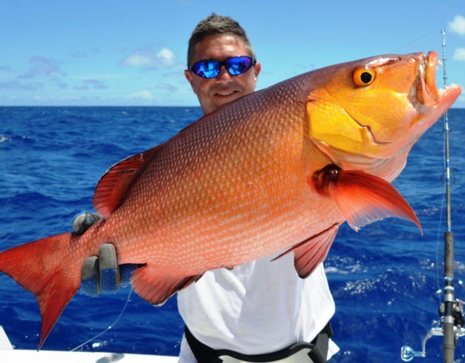 Carpe rouge ou Lutjanus bohar - Rod Fishing Club - Ile Rodrigues - Maurice - Océan Indien