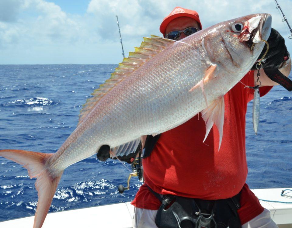 Colas fil ou vivaneau blanc ou Pristipomides filamentosus - Rod Fishing Club - Ile Rodrigues - Maurice - Océan Indien
