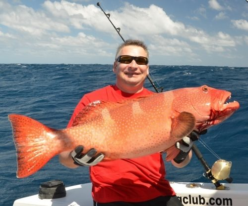Coral trout on jigging for Pierre - Rod Fishing Club - Rodrigues Island - Mauritius - Indian Ocean