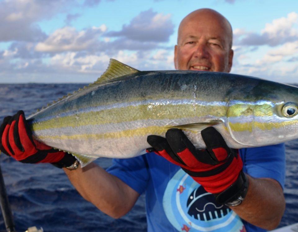 Coureur arc en ciel ou Elagatis bipinnulata - Rod Fishing Club - Ile Rodrigues - Maurice - Océan Indien
