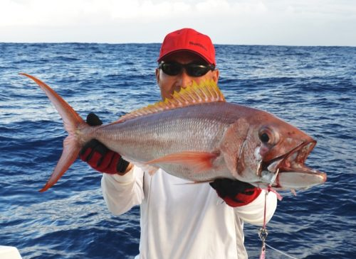 Crimson Jobfish - Rod Fishing Club - Rodrigues Island - Mauritius - Indian Ocean