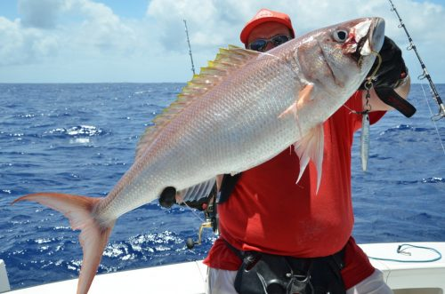 Crimson jobfish on jigging by Bruno - Rod Fishing Club - Rodrigues Island - Mauritius - Indian Ocean