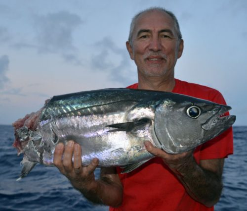 Doggy cut by shark - Rod Fishing Club - Rodrigues Island - Mauritius - Indian Ocean